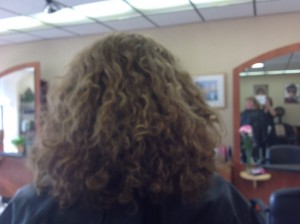 Salon Resee Before